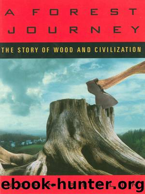 A Forest Journey by John Perlin
