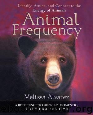 Animal Frequency by Melissa Alvarez