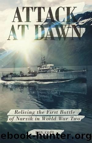 Attack at Dawn by Cope Ron