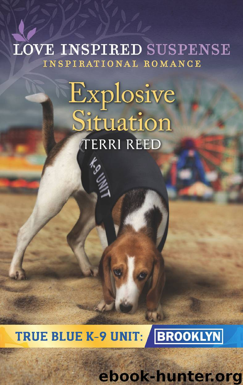 Explosive Situation by Terri Reed