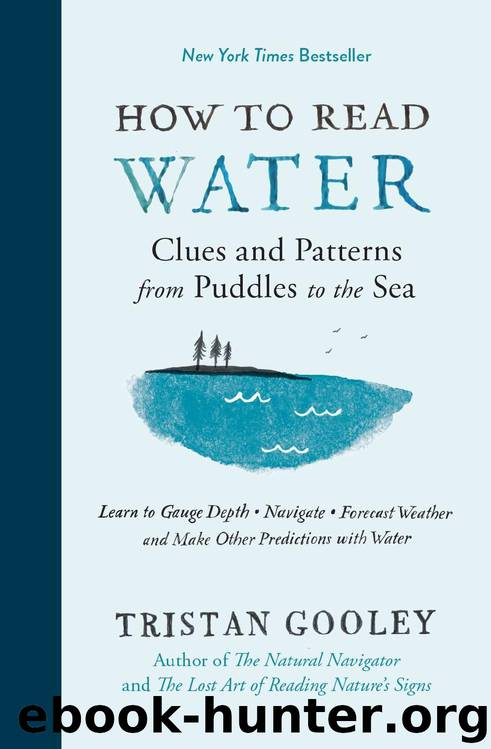 How to Read Water: Clues and Patterns from Puddles to the Sea (Natural Navigation) by Tristan Gooley