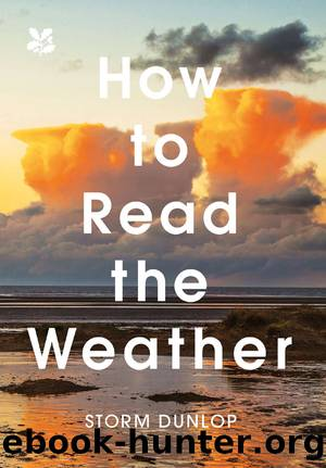 How to Read the Weather by Storm Dunlop