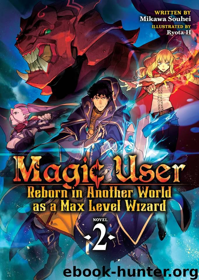 Magic User: Reborn in Another World as a Max Level Wizard (Light Novel) Vol. 2 by Mikawa Souhei