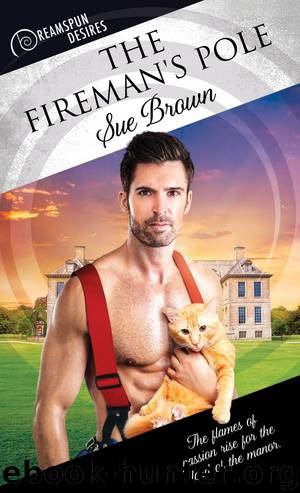 The Fireman's Pole by Sue Brown