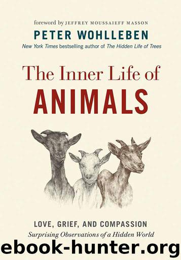 The Inner Life of Animals by Peter Wohlleben