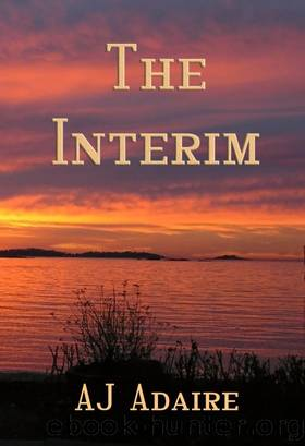 The Interim by A.J. Adaire