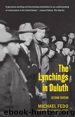 The Lynchings in Duluth: Second Edition by Michael Fedo