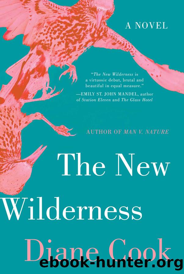 The New Wilderness by Diane Cook