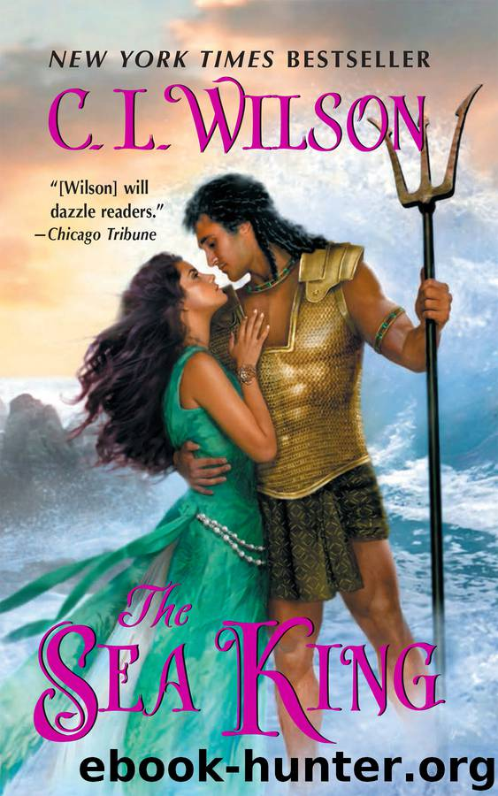 The Sea King by C. L. Wilson
