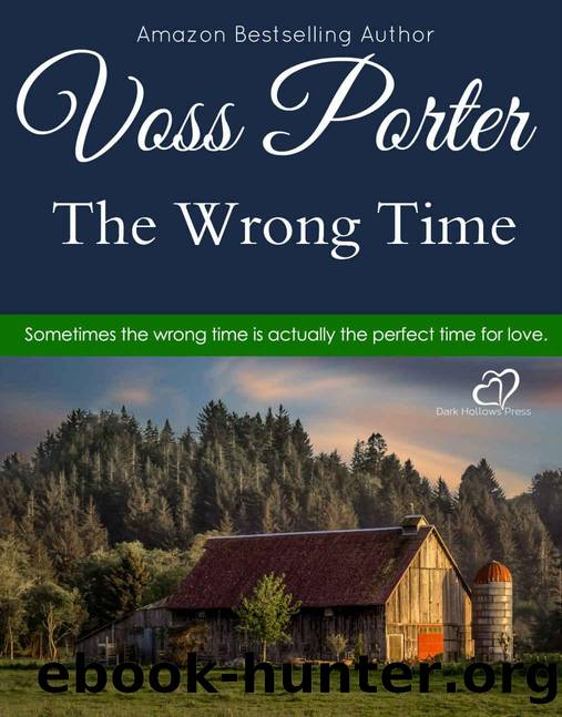 The Wrong Time by Voss Porter