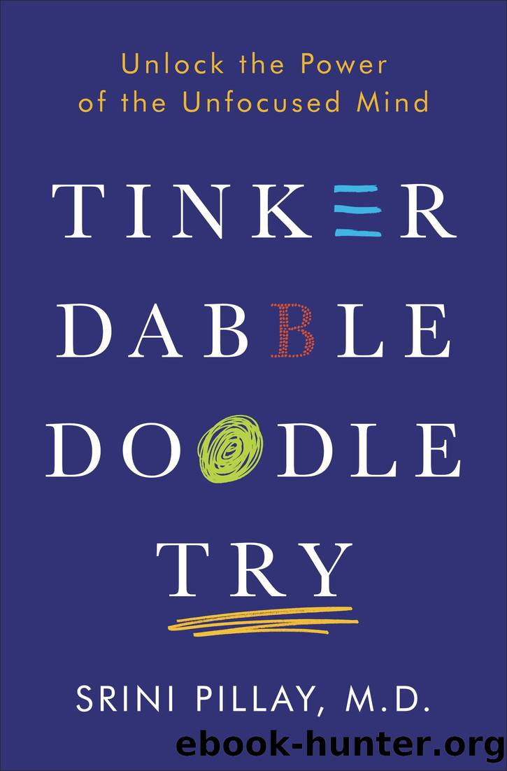 Tinker Dabble Doodle Try by Srini Pillay M.D