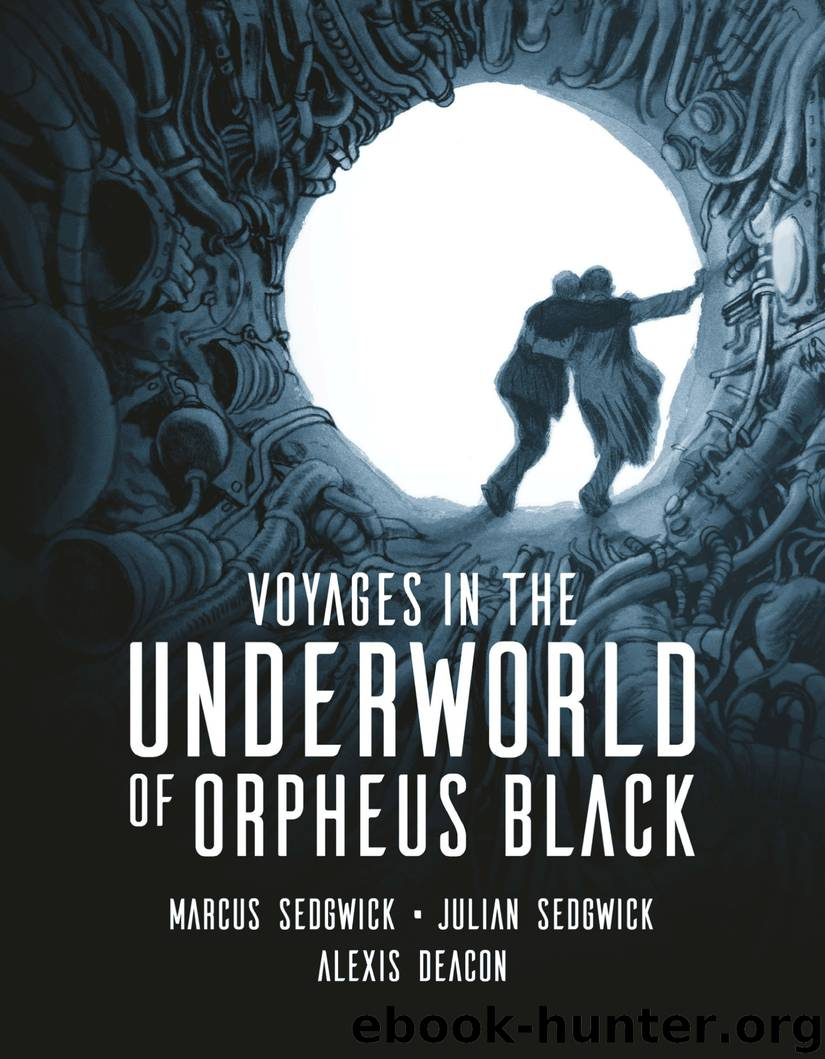Voyages in the Underworld of Orpheus Black by Sedgwick Marcus & Sedgwick Julian