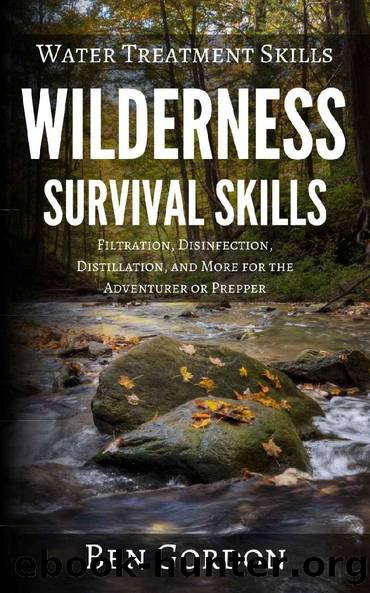 Water Treatment Skills: Filtration, Disinfection, Distillation, and More for the Adventurer or Prepper (Wilderness Survival Skills Book 2) by Ben Gordon