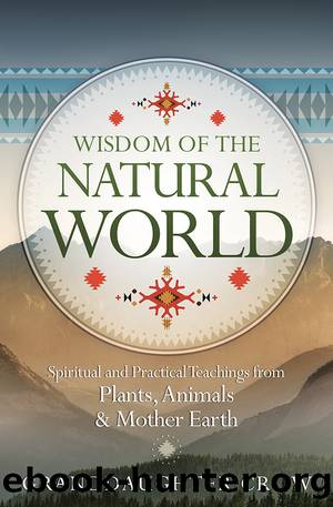 Wisdom of the Natural World by Granddaughter Crow